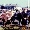 Fair Day, Ballinrobe, Co. Mayo July 1961